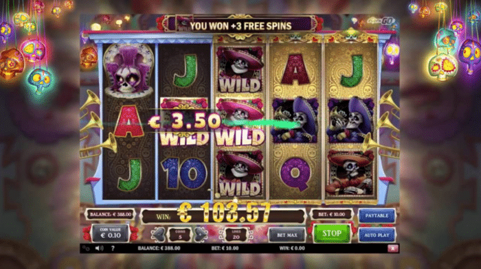 Play'n GO Video Slots